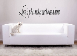 Love is what makes our house a home