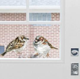 Muursticker vogel huismus