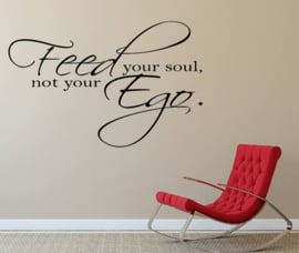 Feed your soul, not your Ego.