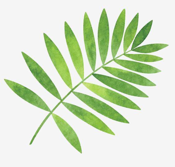 Muursticker blad groen interieur decoratie sticker