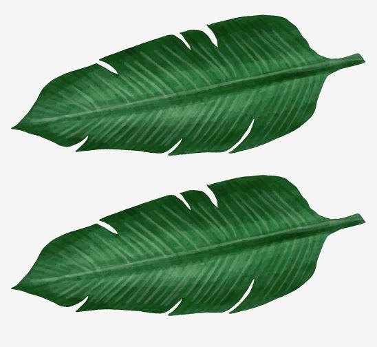 Muursticker bananenblad groen interieurdecoratie sticker