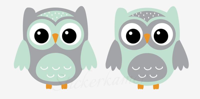 Little owl muursticker uilen mint - grijs