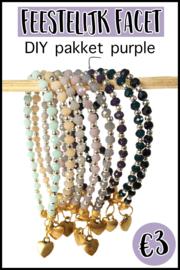 DIY pakket feestelijk facet purple