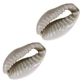 Schelp kralen kauri Grey