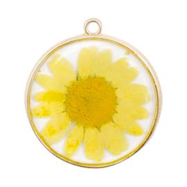 Bedels met gedroogde bloemetjes Gold-yellow
