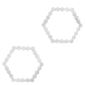 Roestvrij stalen (RVS) Stainless steel bedels/tussenstuk hexagon Zilver