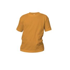 Logostar baby/kind oranje
