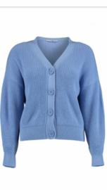 Vest bright blue