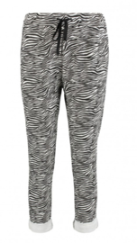Jogging zebra