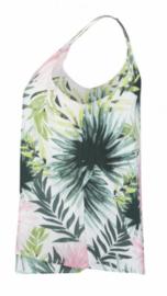 Top Mexico palm