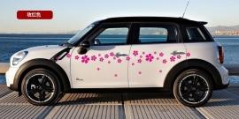 AS008 Auto striping bloem 2