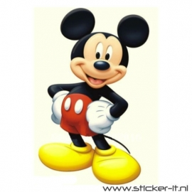 CD024 Mickey Mouse