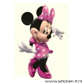 CD025 Minnie Mouse