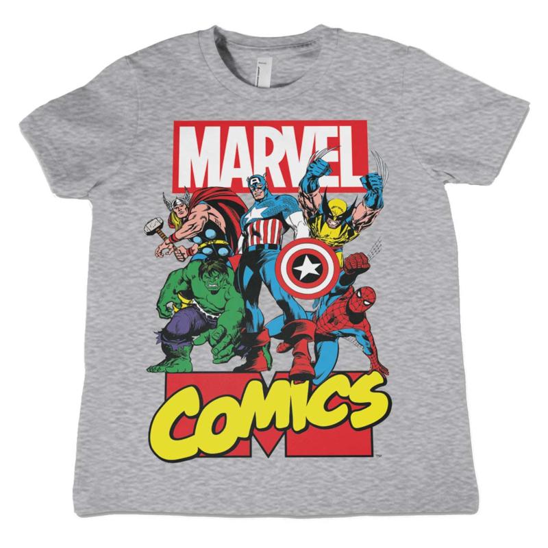 Marvel Comics T-shirt Heroes Kids (grijs)
