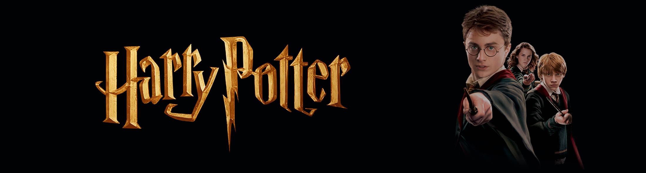 Koning en Eindbaas Harry Potter