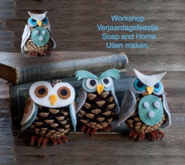 Workshop uilen