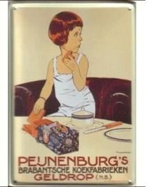 Peijnenburg 20 x 30 cm