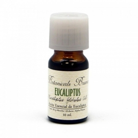 Botanical oil Eucalyptus