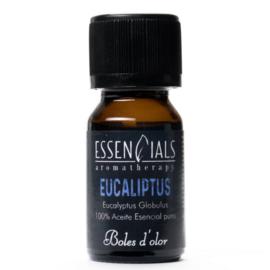 Boles d'olor etherische olie Eucalyptus
