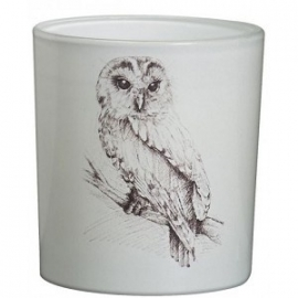 Bolsius Glas Forest Owl Wit