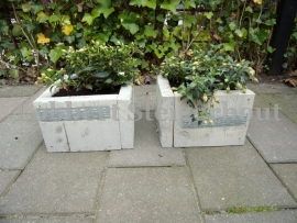 Set van 2 Steigerhouten plantenbakjes