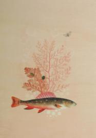 Print op hout 'vis' 15cm x 21cm, Pimpelmees