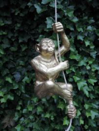 Hanging Monkey gold
