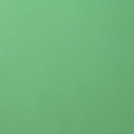 2926-058 Florence Cardstock smooth Emerald
