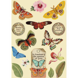 KLSP093 Stamperia Wooden Shapes A5 Amazonia Butterfly