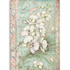 DFSA4508 Stamperia Rice Paper A4 White Orchid