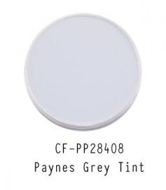 CF-PP28408 PanPastel Paynes Grey Tint 2 840.8