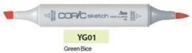 YG01 Copic Sketch Marker Green Blice