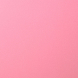 2926-019 Florence Cardstock smooth Pink