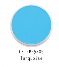 CF-PP25805 PanPastel Turquoise 580.5