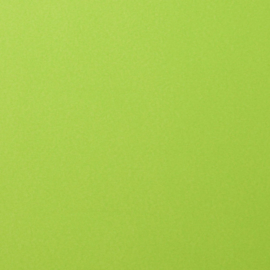 2926-068 Florence Cardstock smooth Lime