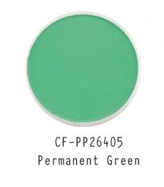 CF-PP26405 PanPastel Permanent Green 640.5
