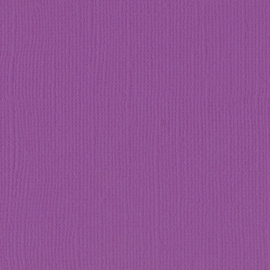 2928-038 Florence cardstock plum