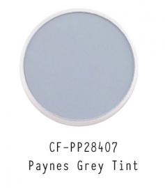 CF-PP28407 PanPastel Paynes Grey Tint 2 840.7