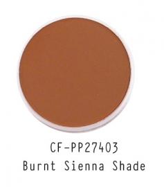 CF-PP27403 PanPastel Burnt Sienna Shade 740.3