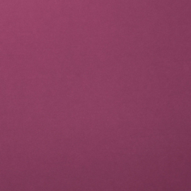 2926-039 Florence Cardstock smooth Mauve
