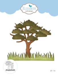 1624 Tree