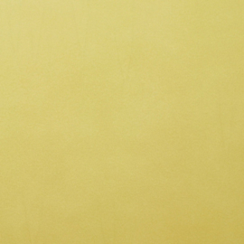 2926-066 Florence Cardstock smooth Anise