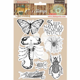 WTKCC193 Stamperia Natural Rubber Stamp Amazonia Butterfly