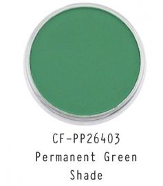 CF-PP26403 PanPastel Permanent Green Shade 640.3