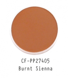 CF-PP27405 PanPastel Burnt Sienna 740.5