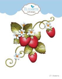 1777  ECD The Paper Flower Collection Strawberries