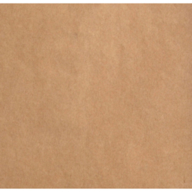 2928-100 Florence Cardstock smooth Kraft dark