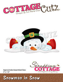 CC-794 Scrapping Cottage Snowman In Snow