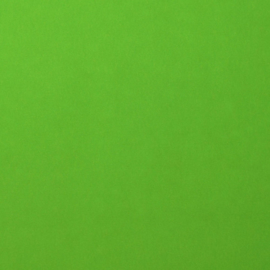 2926-074 Florence Cardstock smooth frog