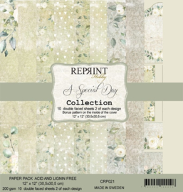 CRP021 Reprint 12x12 Inch Collection Pack  A Special Day